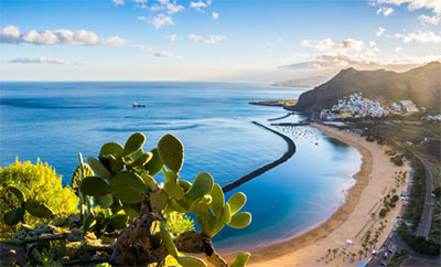 The Warmth of the Canary Islands